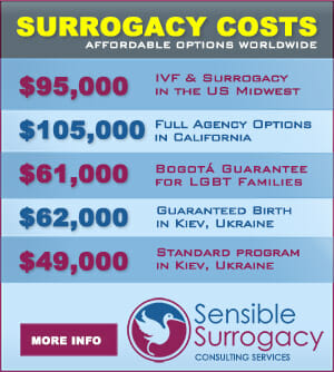 Surrogacy Cost Table
